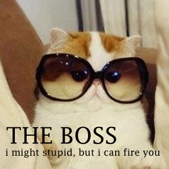 The-boss-stupid-but-can-fire-you